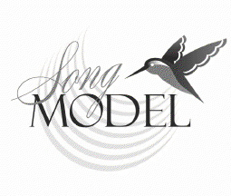 songmodel management