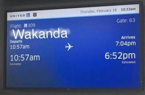 Flight to Wakanda